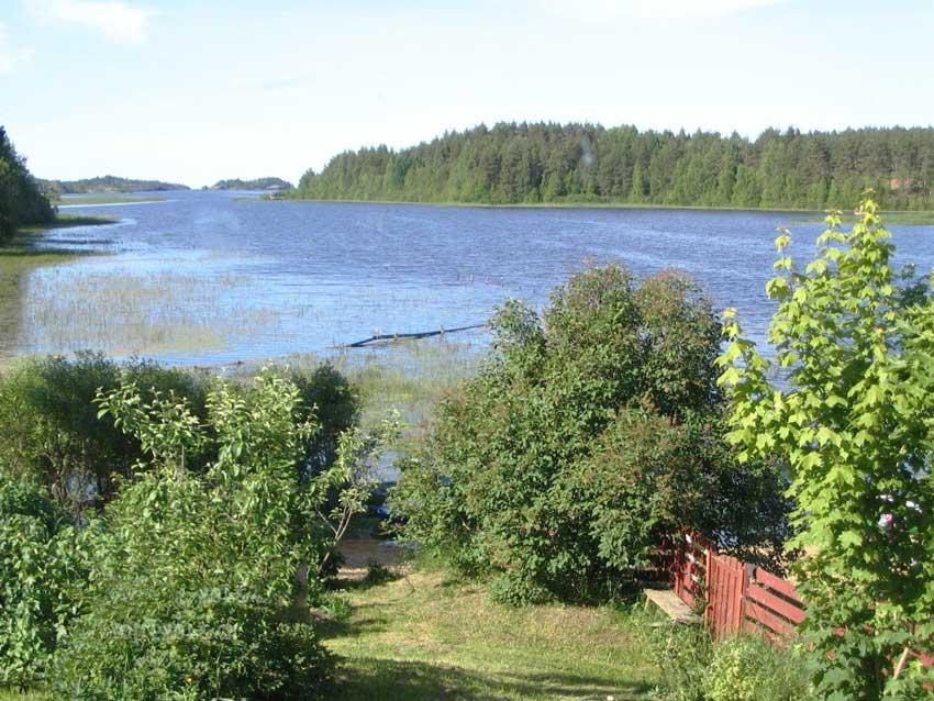Подбор участка в Ленинградской области