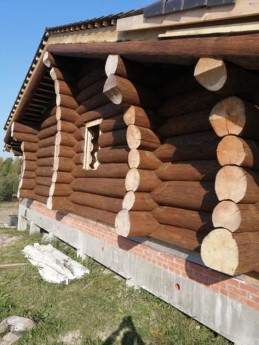 okr sr2 - Окрашивание сруба дома в Ленинградской области